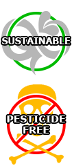 Agriculture durable, pas de pesticides